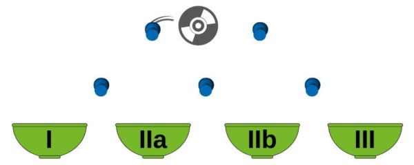 A disc falling down, bumping on some pins, finally landing in one of the 4 bowls, labelled I, IIa, IIb and III. Symbolizing software classification according to EU MDR.